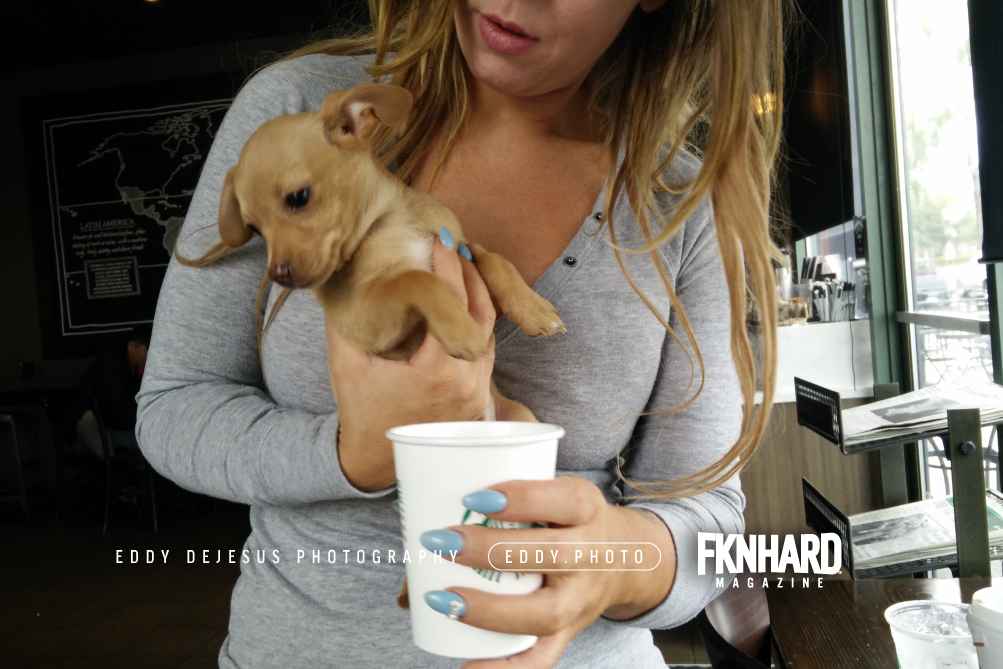 eddy-dejesus-photography-fknhard-magazine-mint-color-nails-diamond-starbucks-puppuccino-whip-cream-drink-cute-puppy-golden-retriever